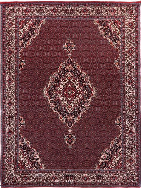 """Hand Knotted Iran Bidjar 8'5"""" x 11'6"""" Red DK"""