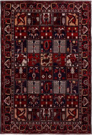 Hand Knotted Iran Bakhtiari 7' x 10' Multi